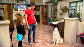Catelul blogger - Lansare sezon 3. Urmareste doar la Disney Channel!