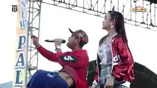 Download Lagu 🔴JIHAN AUDY ft BRODEN   SATU HATI SAMPAI MATI   New Pallapa RESPEK mp3