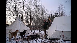 Winter Camping - Snowtrekker & Atuk Canvas Tents, with the Dogs