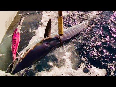2019 EXceL Sport Fishing Adventure Part2(wahoo)
