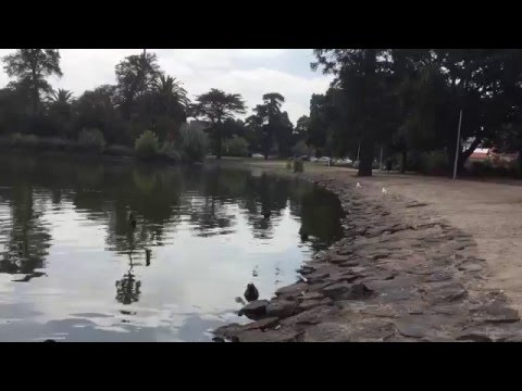 Melbourne Australia- Queens Park Moonee Ponds,VIC