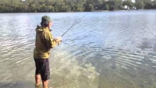 Cedar lake Part I