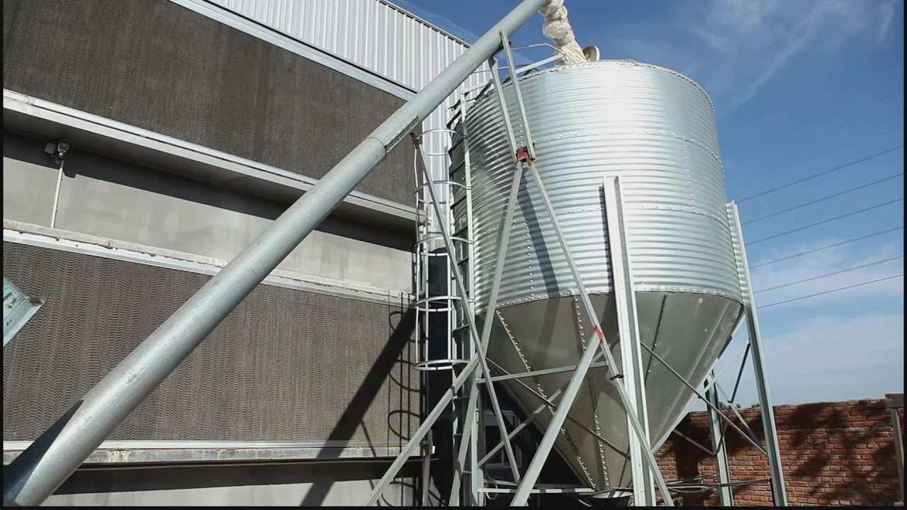 Automatic Chicken Feeding System in Poultry Farming-Farming Port Poultry  Feeder