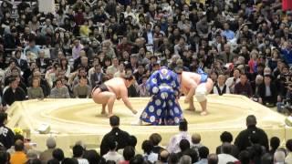 大相撲三月場所。碧山対豪栄道。豪栄道は負け。