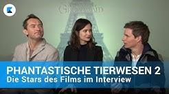 PHANTASTISCHE TIERWESEN 2 | Die Stars des Films im Interview