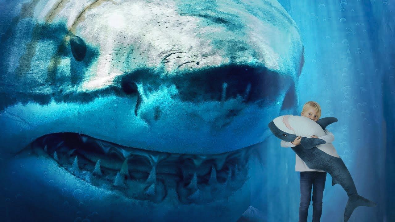 Was ist, wenn Megalodon Haie immer noch im tiefen Ozean leben?