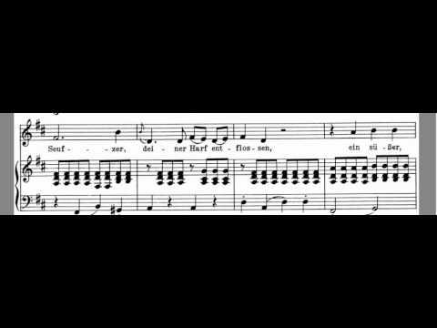 An Die Musik Accompaniment Schubert  High Key D Maj