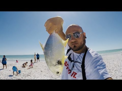 Fishing In Clearwater Florida Pompano Fish
