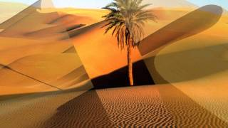 DJ Dado - Desert Of Sadness