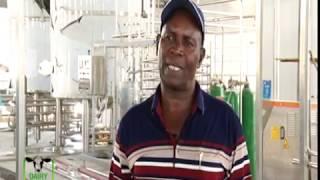 Milk processing plant to boost farmers in Meru - part 1