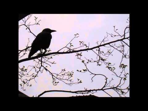 La Siberia - El Cuervo - Edgar Allan Poe