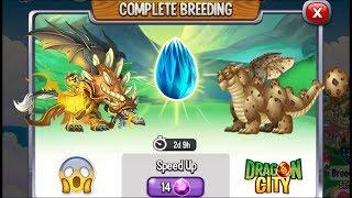NEW BREEDING: Necro Dragon & Cookie Dragon | DRAGON CITY 😍