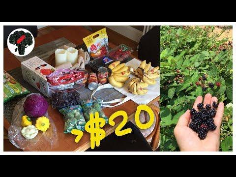Salvage Grocery Haul #5 + Free Wild Berries