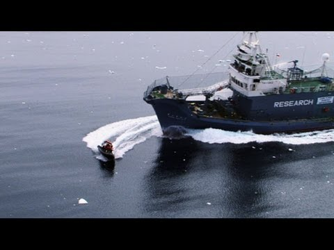 Time to Attack!  New Series Sneak Peek  Whale Wars Ep2