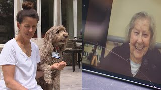Therapy dog 'visiting' seniors during COVID-19 outbreak