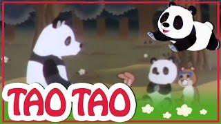 Tao Tao - 32 - משפחת הרון ופוקס