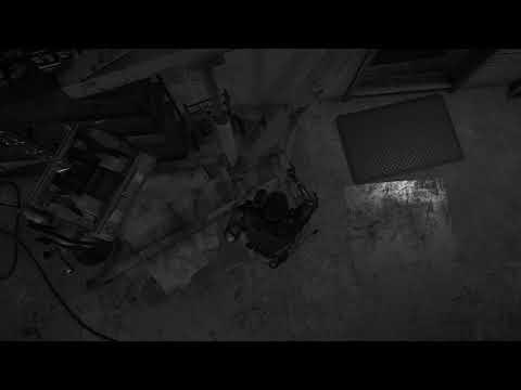 Far Cry 5 Third person glitch