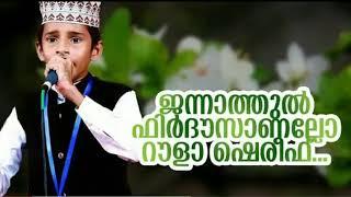 ജന്നാത്തുൽ ഫിർദൗസാണല്ലോ റൗളാ ശരീഫ്... / Nafid Iringallur / Super Madhu Song