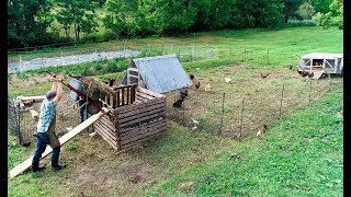 my-chicken-compost-corner-on-steroids