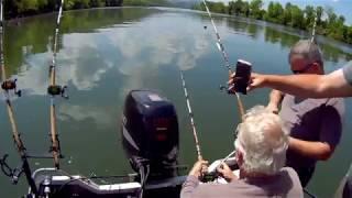Fun Half Day Catfish Trip!