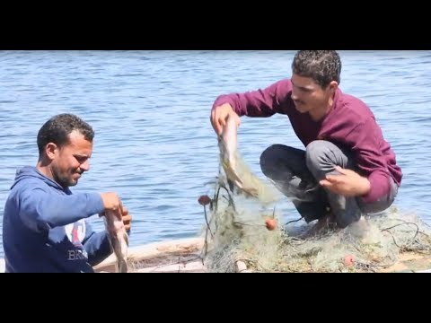Resource management and training supports youth employment in Egypt's Lake Nasser
