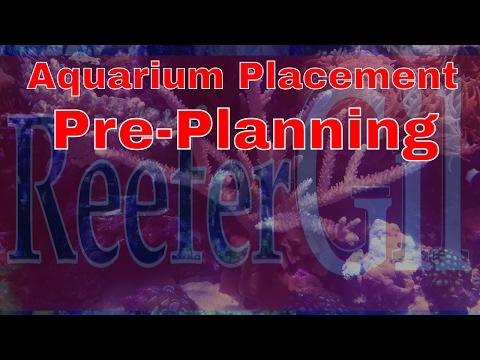 Build Series Eps. 1  Aquarium Placement Planning