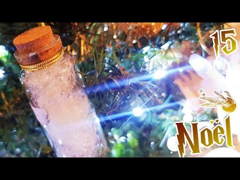Comment Jour15: DIY HARRY POTTER Potions | Sapin de Noël ?