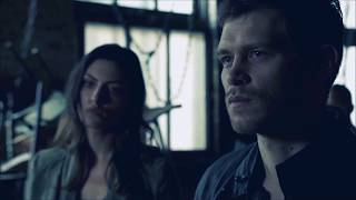 klaus & mikael | because of you