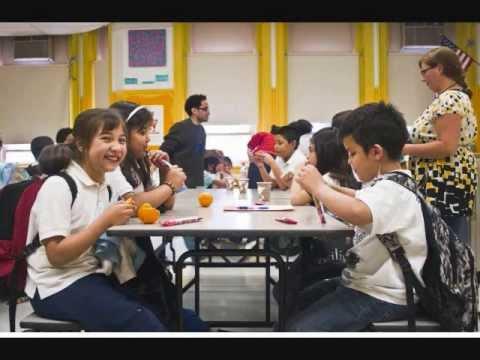 Organic School Project's Grow Teach Feed