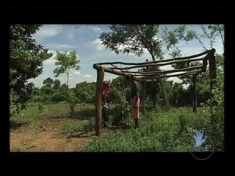 """2009-Paraguay. Campesinos e indígenas: La tierra que llora. Programa """"Es posible""""- Canal Sur TV"""