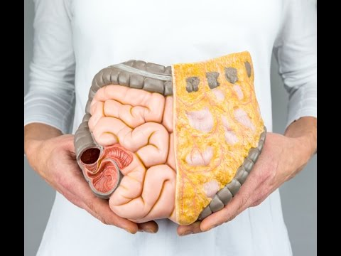 Why You Might Need A Colon Cleanse