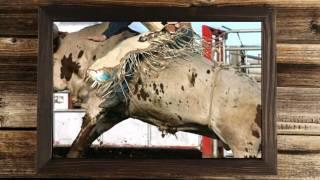 Hometown Cowboy Trailer