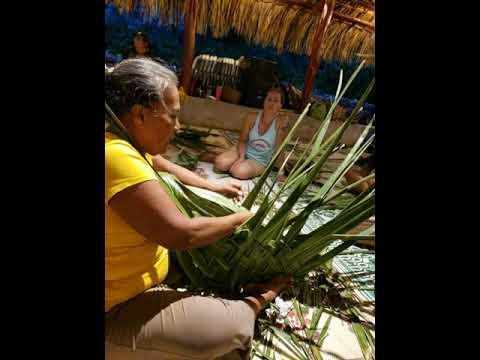 Coconut palm basket weaving