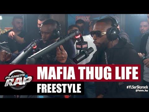 Mafia Thug Life - Freestyle #PlanèteRap