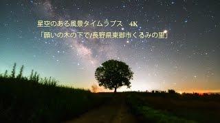 Milky way over Wishing tree. Shooting Location : Nagano, Japan 梅雨...