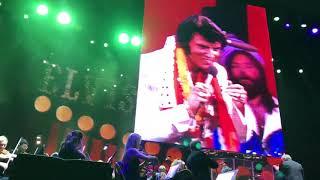 Elvis Presley - A Big Hunk of Love (Live)