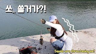삼천포 갑오징어 낚시! 지금 입니다! 달리세요! cuttlefish fishing. 갑오징어 통찜! 에깅. 에깅낚시. fishing. lurefishing. squid