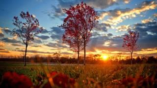 Музыка дляВдохновения - Музыка дляРаботы - Музыка дляПоднятия Настроения