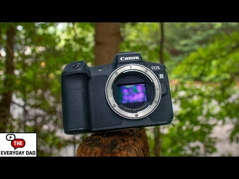 Canon Cameras are the BEST For Creators, and Here's Why!