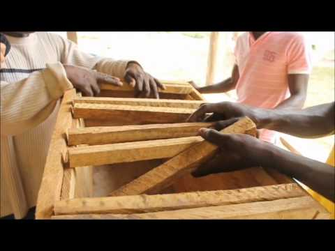 How to Construct Kenya & Saltpond Topbar Bee Hives - Peace ...