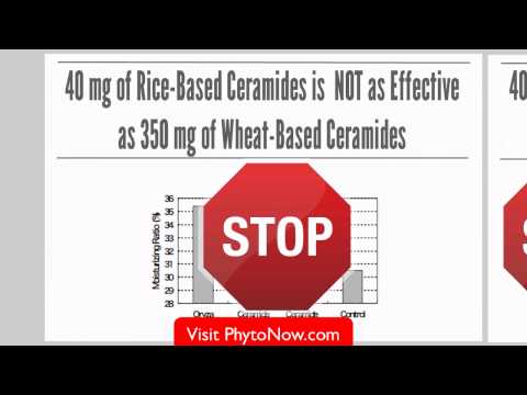 Phytoceramides 350mg Plant Derived - What You NEED to Know!