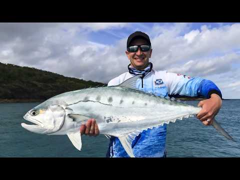 Mackay Fishing Offshore - Queenfish on Surface