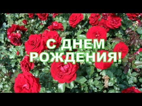 Поздравление с Днем Рождения! Красивые розы. Вариант #1