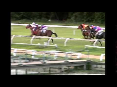 ม้าแข่งสนามไทย วันอาทิตย์ที่ 9 สิงหาคม 58 เที่ยว 8 ม้าชั้น 3