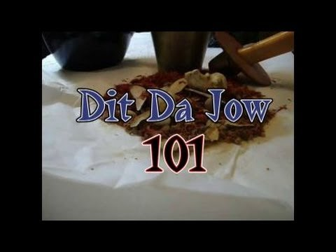Dit Da Jow 101 The Real Facts About Buying, Making, and Applying Dit Da Jow