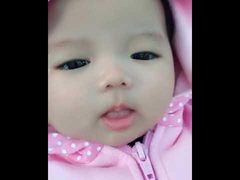 Bayi Imut Youtube