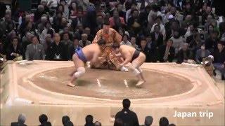 安美錦 vs 旭秀鵬の取組。 2016大相撲春場所3日目。