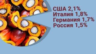 Пальмовое масло. Мировой рынок и импорт России 2020