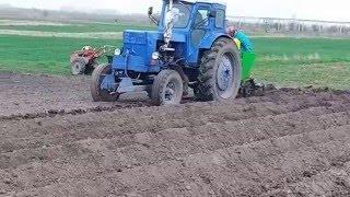 Т40 САДИТЬ новий урожай