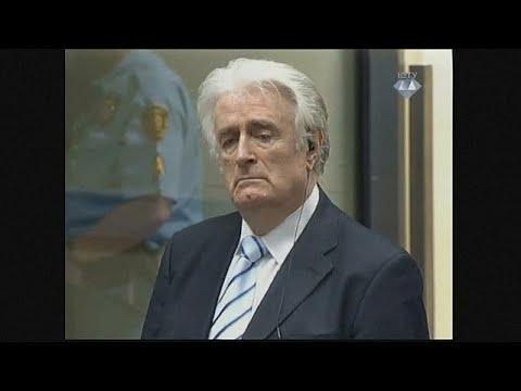 euronews (in English): Radovan Karadzic appeals 40 year jail sentence